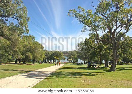 Yanchep National Park With Dramatic Blue Skies