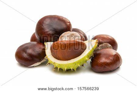 fruit chestnut open on a white background