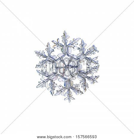 Snowflake isolated on white background. This is macro photo of real snow crystal: large stellar dendrite with long, ornate arms and massive central hexagon, divided by six sectors.