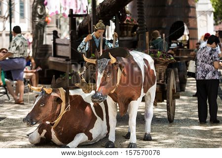 FUNCHAL MADEIRA PORTUGAL - SEPTEMBER 1 2016: Sceneries related to the production of wine during the Wine Festival in Funchal on Madera Portugal