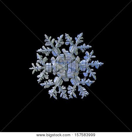 Snowflake isolated on black background. This is macro photo of real snow crystal: big stellar dendrite with ornate arms and massive central hexagon, divided by six sectors.