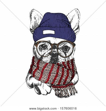 Vector hand drawn portrait of cozy winter dog. French bulldog wearing knitted scarf beanine andhipster glasses. Winter cozy seasonal print. Sketched poster. Use for flyer poster clothing prints.