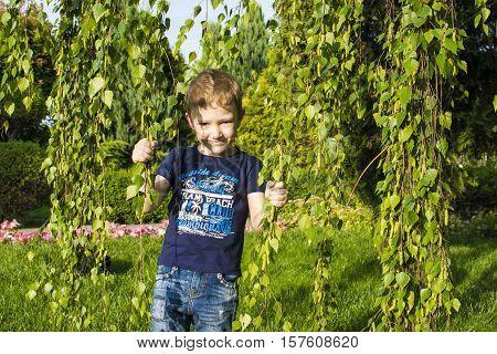 cute little boy in a landscape park