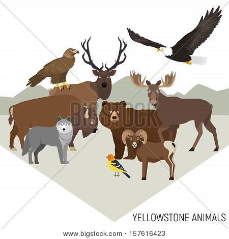 Yellowstone National Park animals composition with grizzly, moose, elk, bear, wolf, golden eagle, bison, bighorn sheep, bald eagle, western tanager, isolated on transparent background