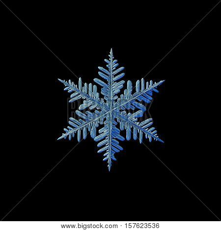 Snowflake isolated on black background. This is macro photo of real snow crystal: large stellar dendrite with traditional shape, six big, ornate arms with many side branches and small details. White and blue variant.