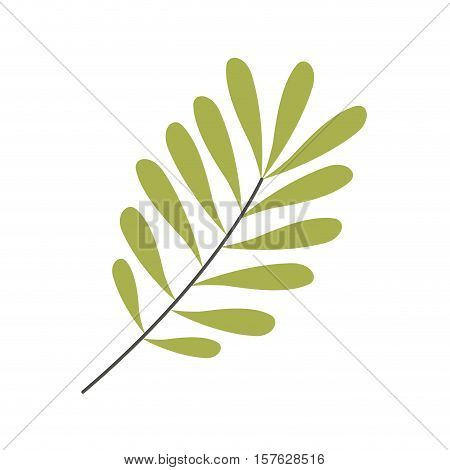 Green leaves Silhouette with ramifications vector illustration