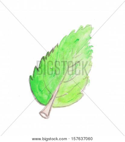 watercolor leaf saving energy or children placeholder