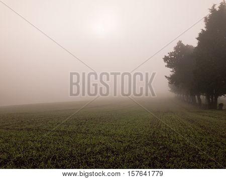 KIRKBY IN ASHFIELD ENGLAND - OCTOBER 31: Farm field in fog England. In Kirkby In Ashfield Nottinghamshire England. On 31st October 2016.