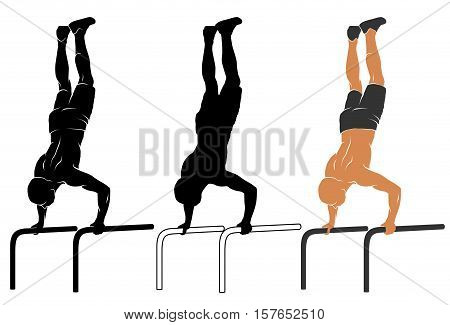 Vector illustration of man performing push-up on parallel bars