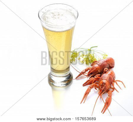 boiled crawfish and beer on a white background