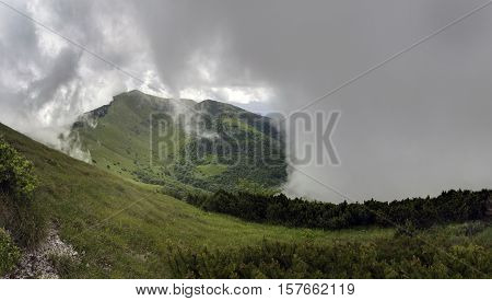 Surrounded by clouds in the top part of Mala Fatra National Park, Slovakia