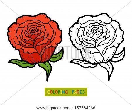 Coloring book for children, coloring page with flower Rose