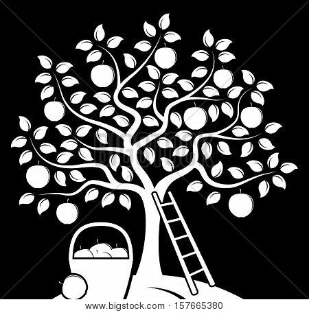 vector apple tree, ladder and basket of apples isolated on black background