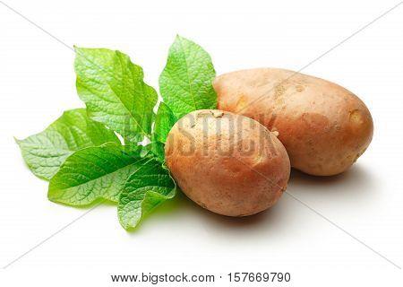 Fresh Whole Potatoes