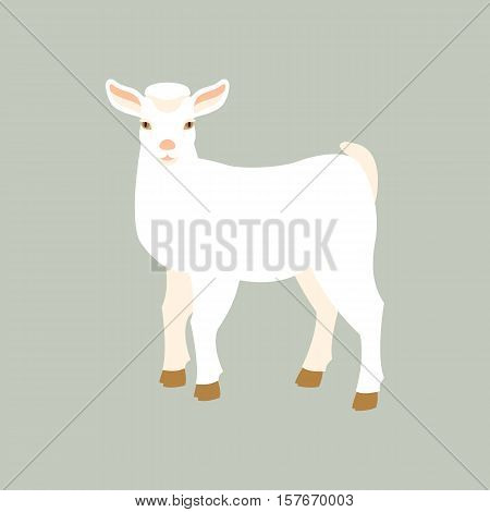 goat kid vector illustration style Flat side