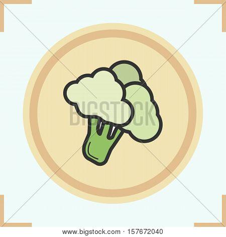 Broccoli color icon. Brocolli. Isolated vector illustration