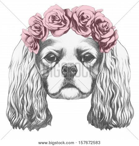 Portrait of Cavalier King Charles Spaniel with floral head wreath. Hand drawn illustration.
