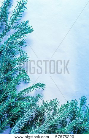 Christmas Background With Evergreen Firtree Branch