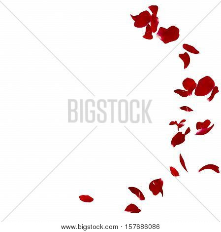 Red Rose Petals Scattered On The Floor In A Semi-circle. 3D Illustration