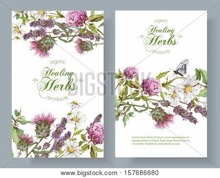 Vector vertical wild flowers and herbs banners. Design for herbal tea, natural cosmetics, honey, health care products, homeopathy, aromatherapy. With place for text