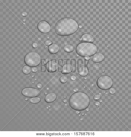 Bubbles on transparent background. Realistic underwater air bubbles translucent texture. Oil or aqua fresh dew water drops on surface with light reflection