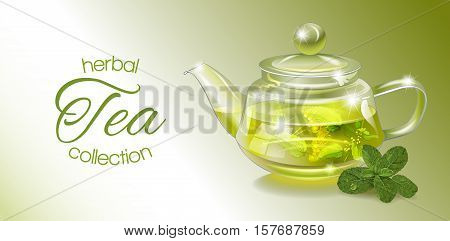 Vector herbal tea banner with transparent teapot and mint. Design for herbal and green tea, drink menu, homeopathy, aromatherapy and health care products. With place for text.