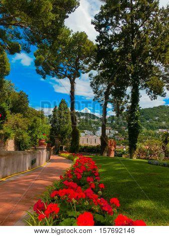 Bautiful public garden in Capri island Italy