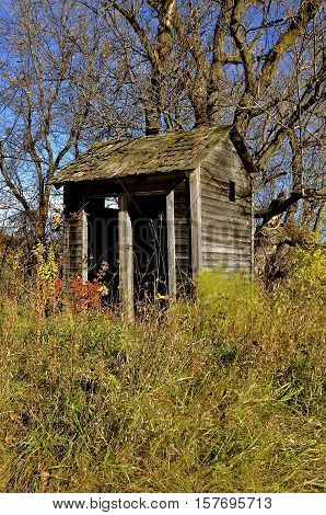 Double doors of a rickety old outhouse  surrounded by trees and colorful weeds in the autumn woods