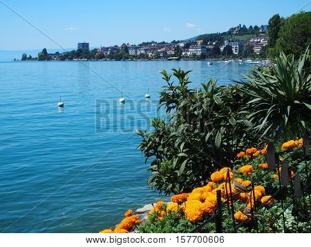 Flowers and beauty view of Geneva Lake seen from promenade in Montreux, Switzerland