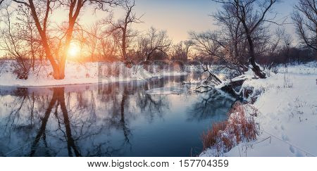 Christmas Background With Snowy Forest. Panoramic Winter Landscape