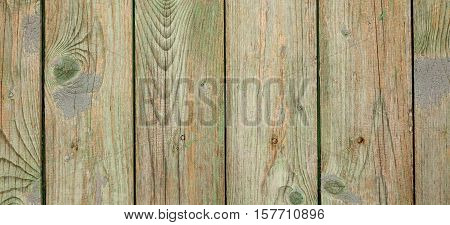 Old Peeled Green Barn Wood Wall Wide Banner Background Texture