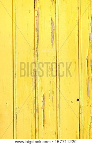Vertical Barn Wooden Wall Plank Yellow Texture. Rustic Wood Background
