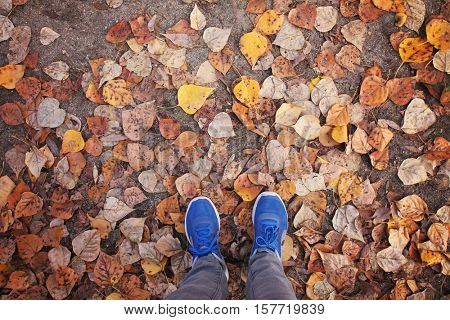 an overhead view of two feet in blue shoes walking on leaves during fall or autumn toned with a retro vintage instagram filter effect or app