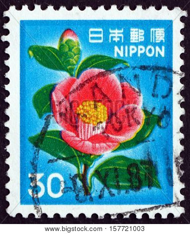 JAPAN - CIRCA 1980 a stamp printed in Japan shows Camellia Camellia Japonica Flower circa 1980