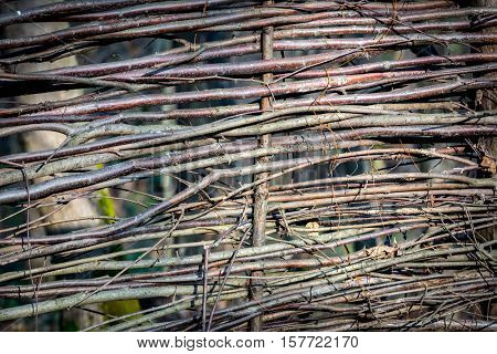 wattle wooden fence - abstract natural background