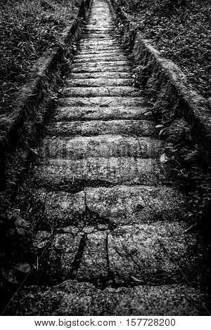 Old stone steps down. Black-white photo. Close-up.