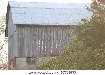 Old wooden barn foggy sky trees around it