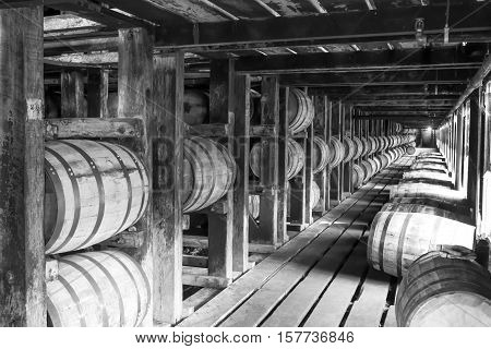Vintage Bourbon Barrels In Rik House