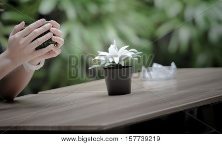 Female hands holding cups of coffee on the wooden table with flower pot