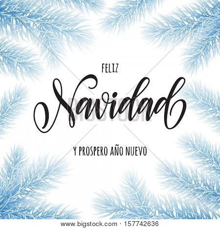 Spanish Christmas and New Year greeting card. Feliz Navidad y Prospero Ano Nuevo poster template of pine and fir christmas tree branches, golden stars, ornament decorations. Calligraphy lettering text