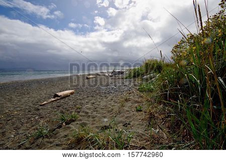 The sun breaks throught the clouds during a rain squall at Island View Beach on Vancouver Island. Drops of rain blurred by the lense continue to fall and wet the sea grass and wild flowers along the shore.
