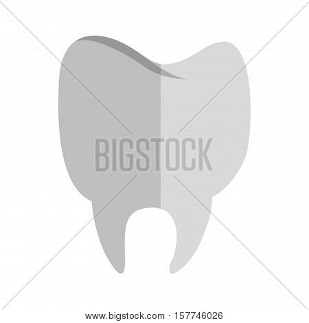 silhouette tooth in degrade gray color vector illustration