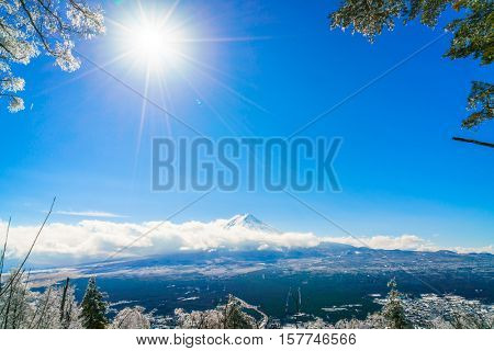Mountain Fuji with ice coating on the trees