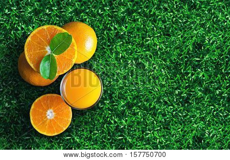 Glass Of Orange Juice From Above On Green Grass. Empty Ready For Your Orange Juice, Fruit Product He