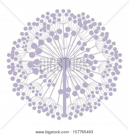 pastel purple silhouette dandelion with pistils vector illustration