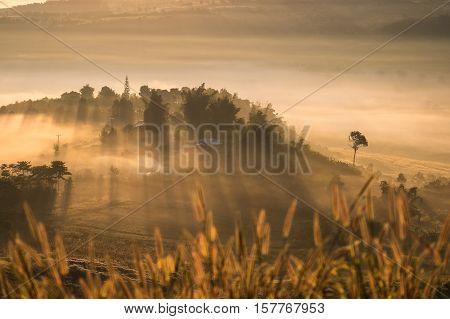 Misty morning sunrise in Khao Takhian Ngo View Point at Khao-kho Phetchabun,Thailand.