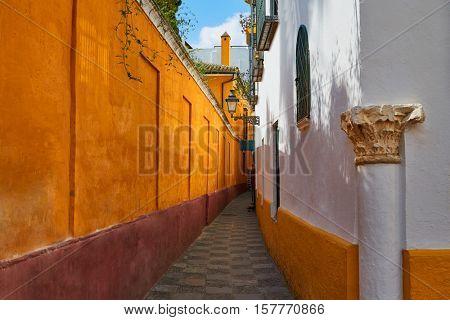 Seville Calle vida near Juderia in Andalusia Sevilla of Spain