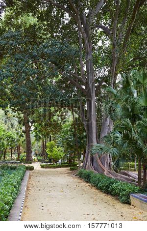 seville maria luisa park gardens in andalucia spain