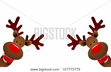 Christmas reindeers  with a scarfon a white background