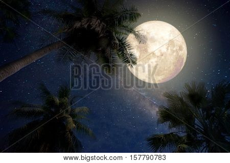 Beautiful fantasy of palm tree at tropical beach and full moon with milky way star in night skies background. Retro style artwork with vintage color tone (Elements of this moon image furnished by NASA)